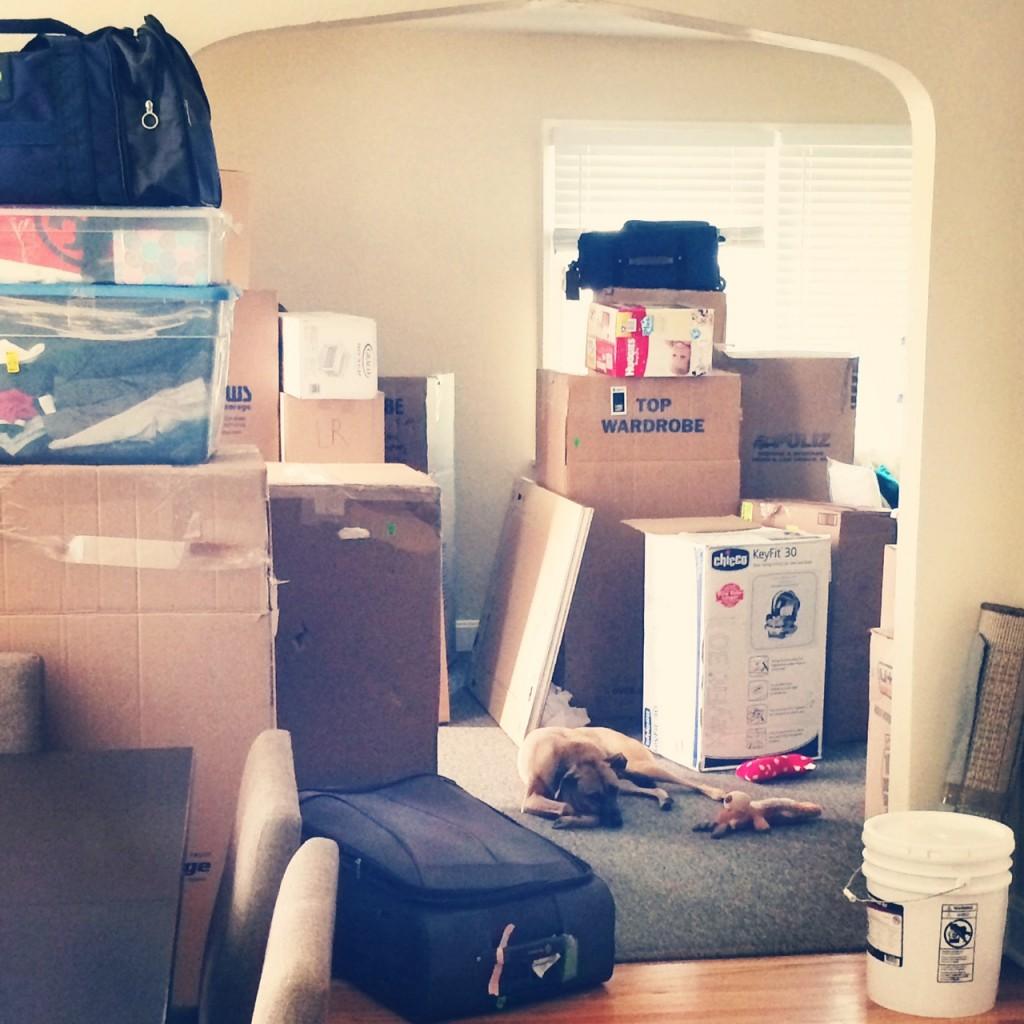 Noo, we have to unpack!